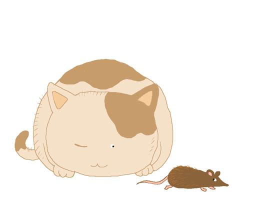 老鼠悄悄地溜走。