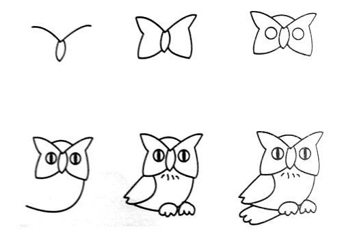 跟我学画猫头鹰。