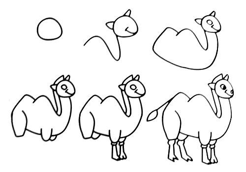 跟我学画大骆驼。