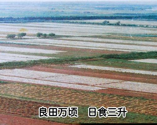 增广贤文 32 (良田万顷)