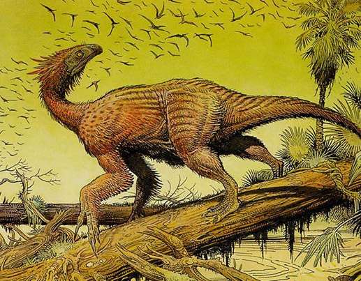 有趣的恐龙