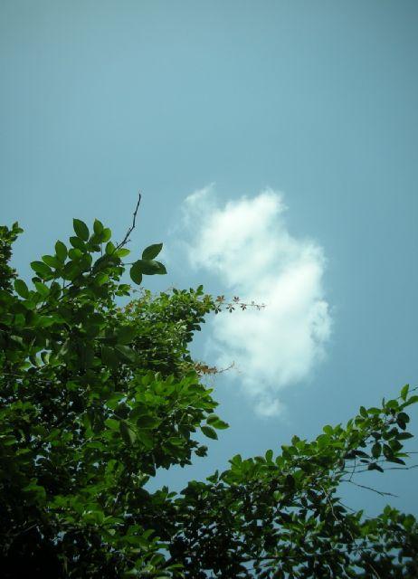 我是一朵小小的云