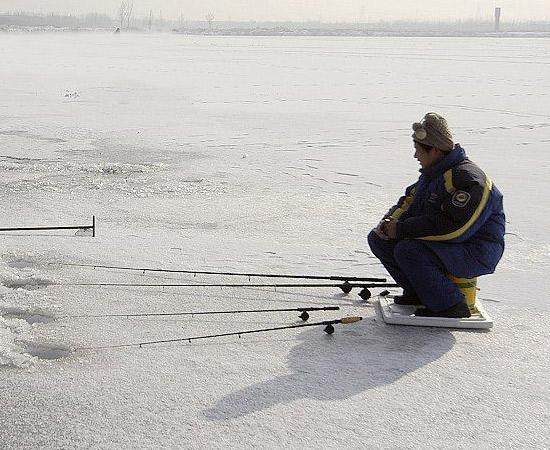 格雷斯钓鱼